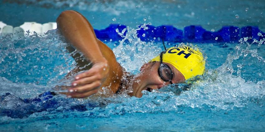 piscine val d'allier comté, harmonisation des tarifs pour les