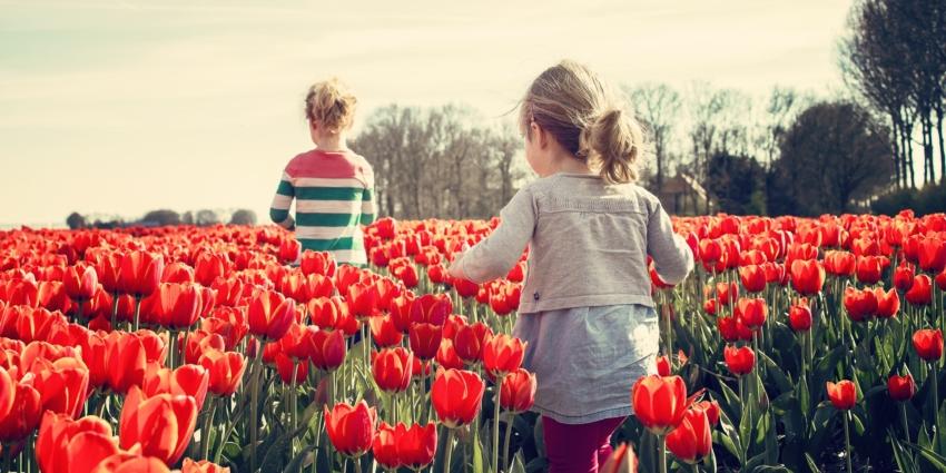 ALSH itinérant : réservez vos vacances de printemps !